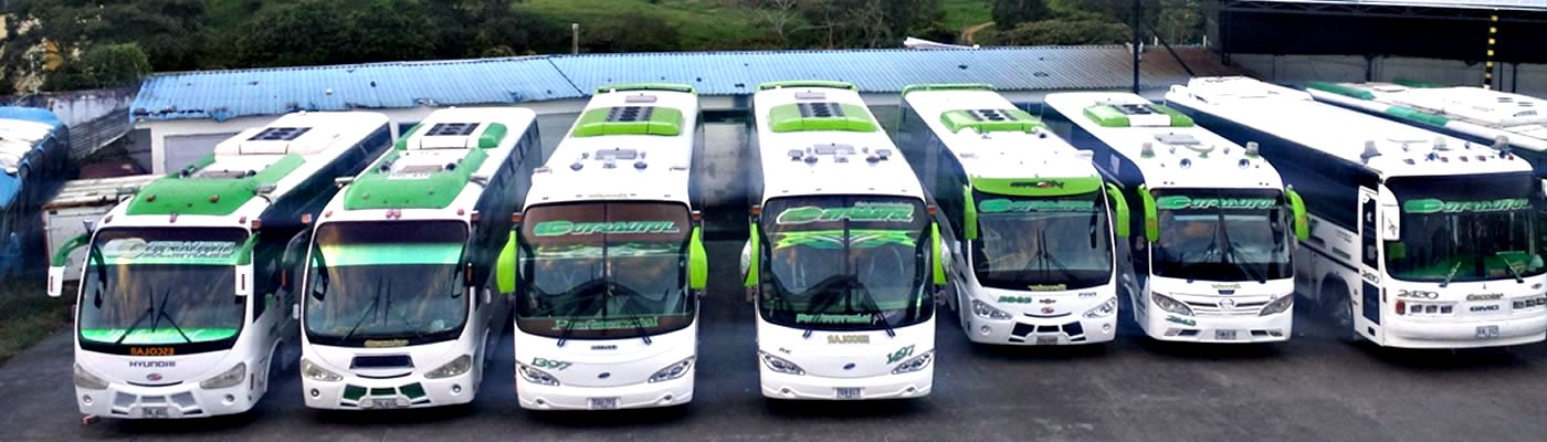 Servicio especial, transporte escolar, particulares, asalariados y  turismo